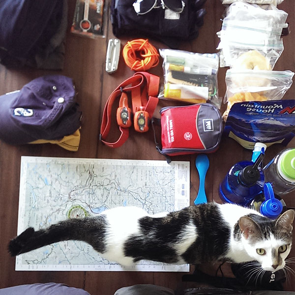 Getting the gear together for the hike. And, no, the kitty didn't come with us.